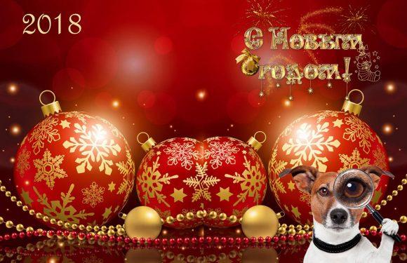 С Новым годом…Собаки!