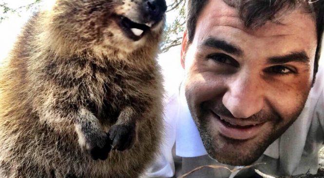В Перте у Федерера появился новый мохнатый друг