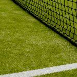 В Берлин возвращается турнир WTA Premier, но в этот раз на траве